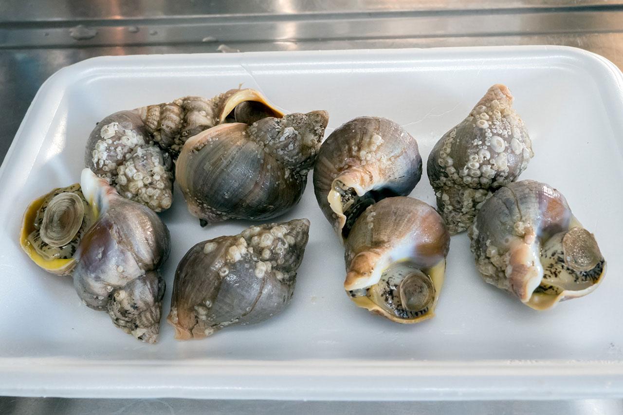 バイ貝の煮付け 材料
